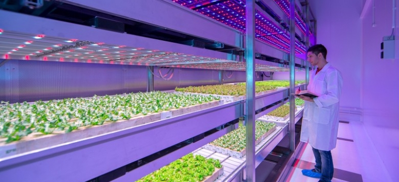 Benefit from buildings in modern agriculture.