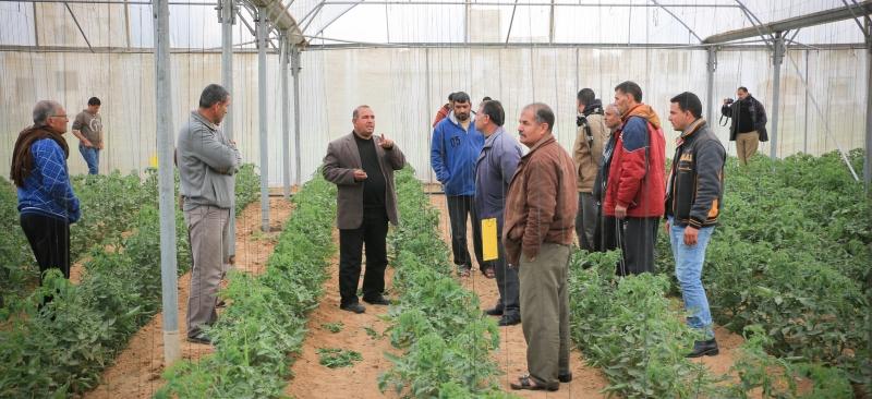 تنظيم زيارات للمزارعين لموقع المشاهدة الخاص بالزراعة العضوية