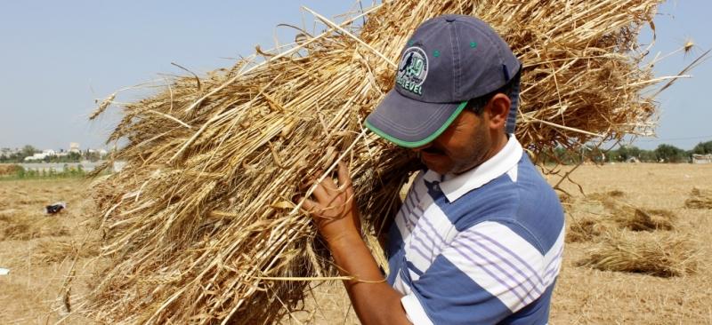 مساعدة المزارعين