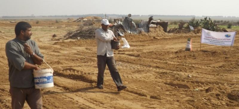 مشروع استصلاح الأراضي الزراعية في المناطق العازلة